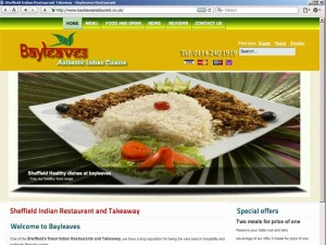 Affordable web design project bayleaves