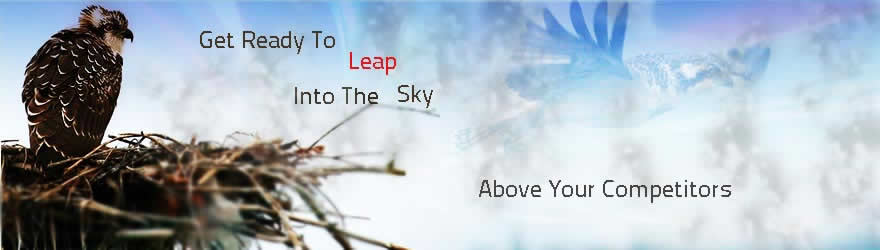 Leap your Business